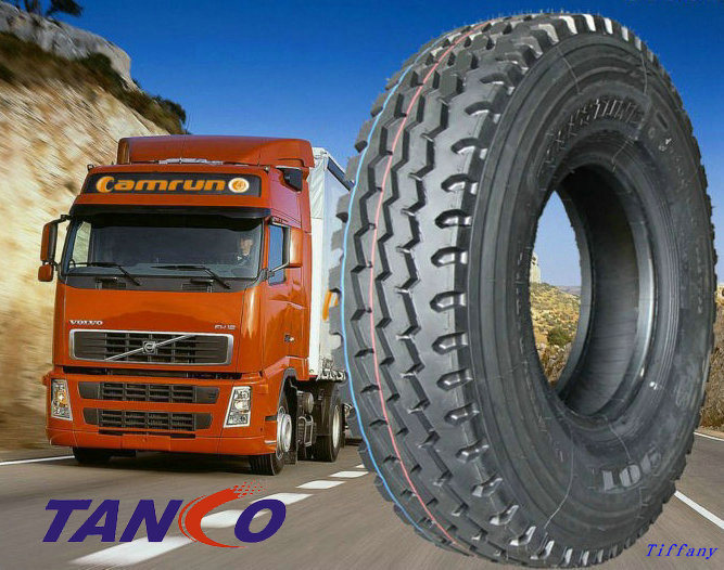 Triangle//Double Star/Doulbe Happiness Brand Truck Tire 11r22.5 12r24.5 with China Wholesaler